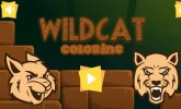 Wild cat coloring
